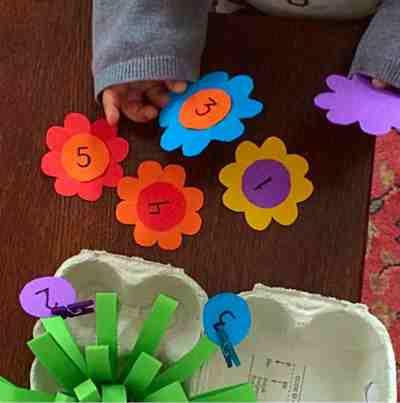 flores y numeros22
