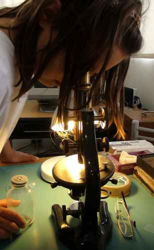 Metodología de trabajo para hacer ciencias con los peques