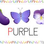 Los colores: púrpura