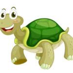 Cómo fomentar el autocontrol de la conducta impulsiva en el aula a través de la técnica de la tortuga