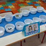Experimentando en la clase de infantil: Ciencia con imanes