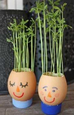 Cultivamos plantas en unas macetas con caras