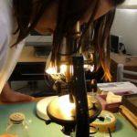 ¿Qué metodología es la más adecuada para trabajar el método científico con los peques?